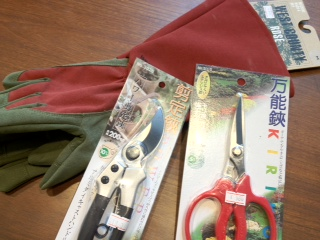 剪定用の手袋とハサミ