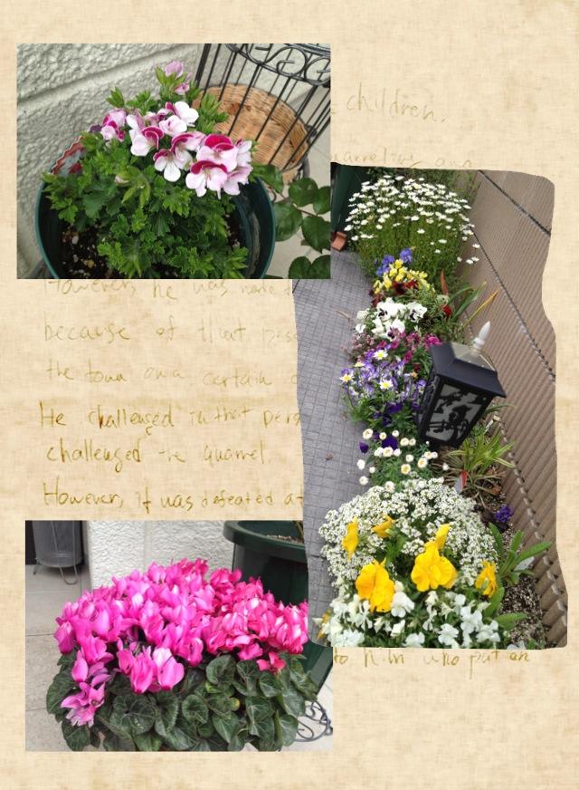 バラ以外の花
